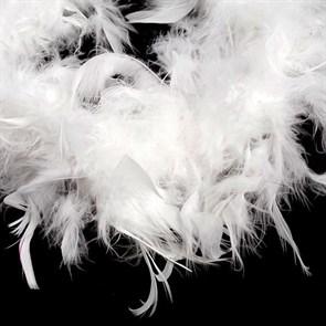 Боа - перо  арт.FBY-50-1 уп.50+-3гр цв.белый дл.2м
